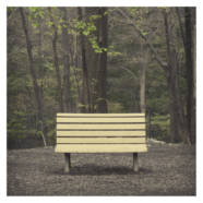 Streetlight Manifesto- The Hands That Thieve review