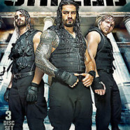 The Destruction of The Shield DVD review