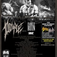 "DOYLE to Kick Off ""Abominator Tour 2015"""