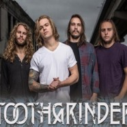 Interview: Toothgrinder