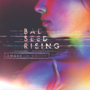 Review: Bad Seed Rising- Awake In Color