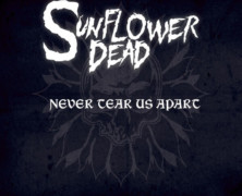 """Sunflower Dead Re-Imagines The Classic INXS 1987 Hit """"Never Tear Us Apart"""""""